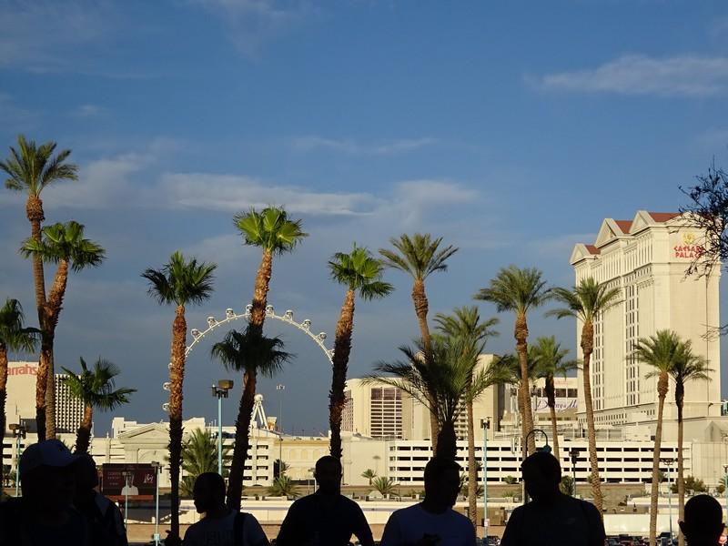 PokR Yonnais a Las Vegas - 0246